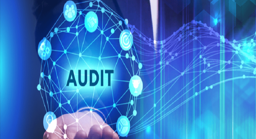 Reasons Why You Should Invest In Field Audit Software in Pakistan For Business Efficiency