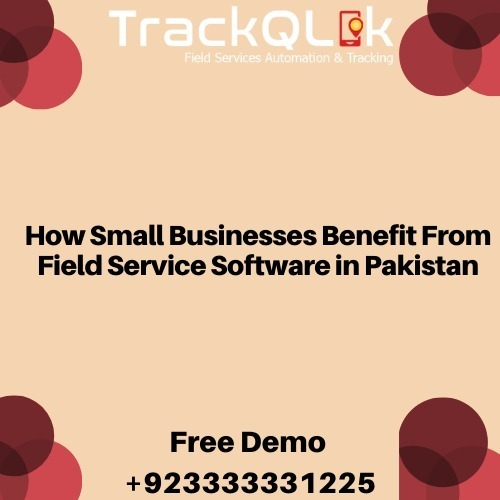 How Small Businesses Benefit From Field Service Software in Pakistan
