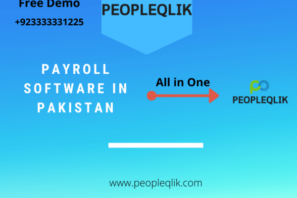 How Companies Can Increase Productivity With Payroll Software In Pakistan?
